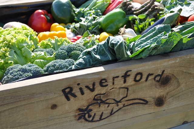 riverford organics dorchester food and gift fair